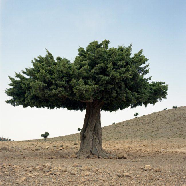 photographie voyage reportage paysage maroc
